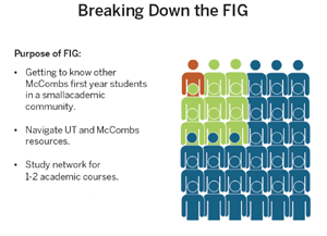 Image of Breaking Down The FIG Resource