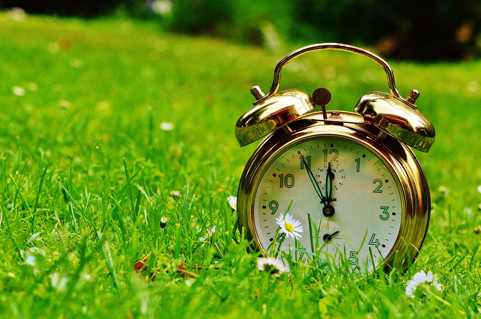Old style clock in a field of grass